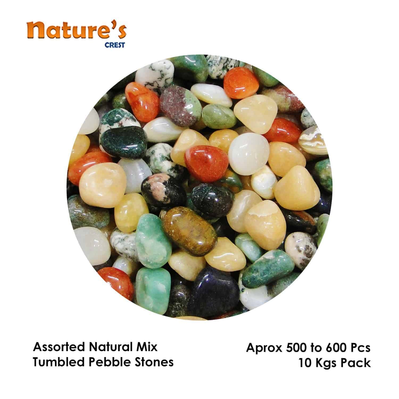 Assorted Mix Tumbled Pebble Stones Nature's Crest TS0000 ₹199.00