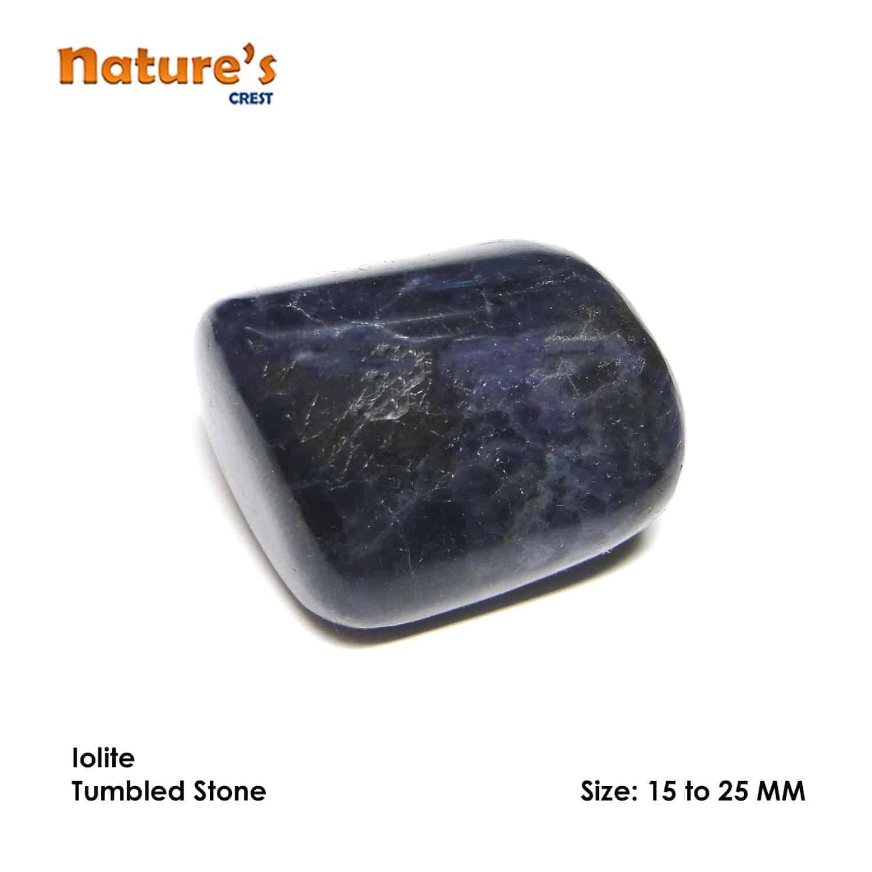 Iolite Tumbled Pebble Stones Nature's Crest TS009 ₹199.00