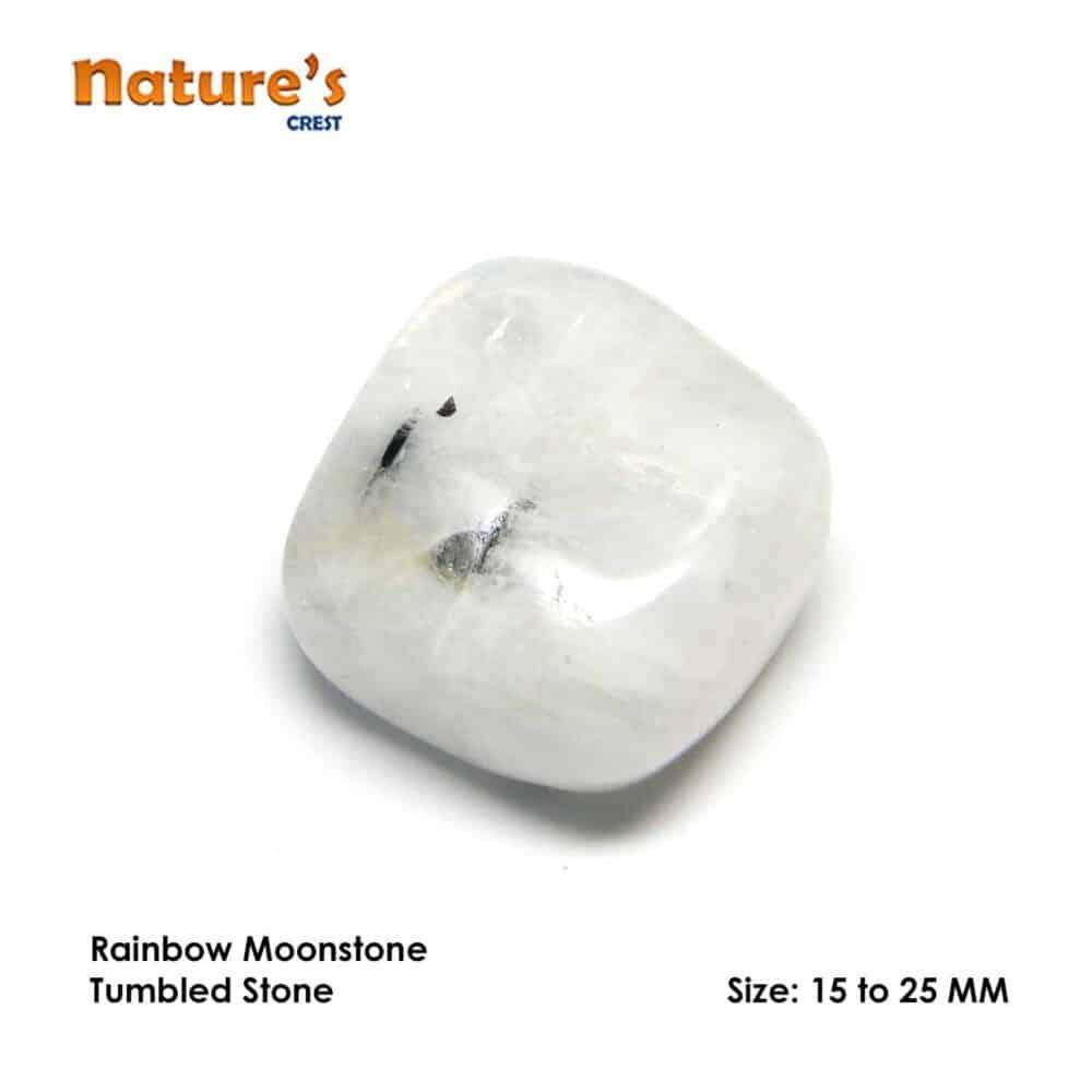 Rainbow Moonstone Tumbled Pebble Stones Nature's Crest TS013 ₹199.00
