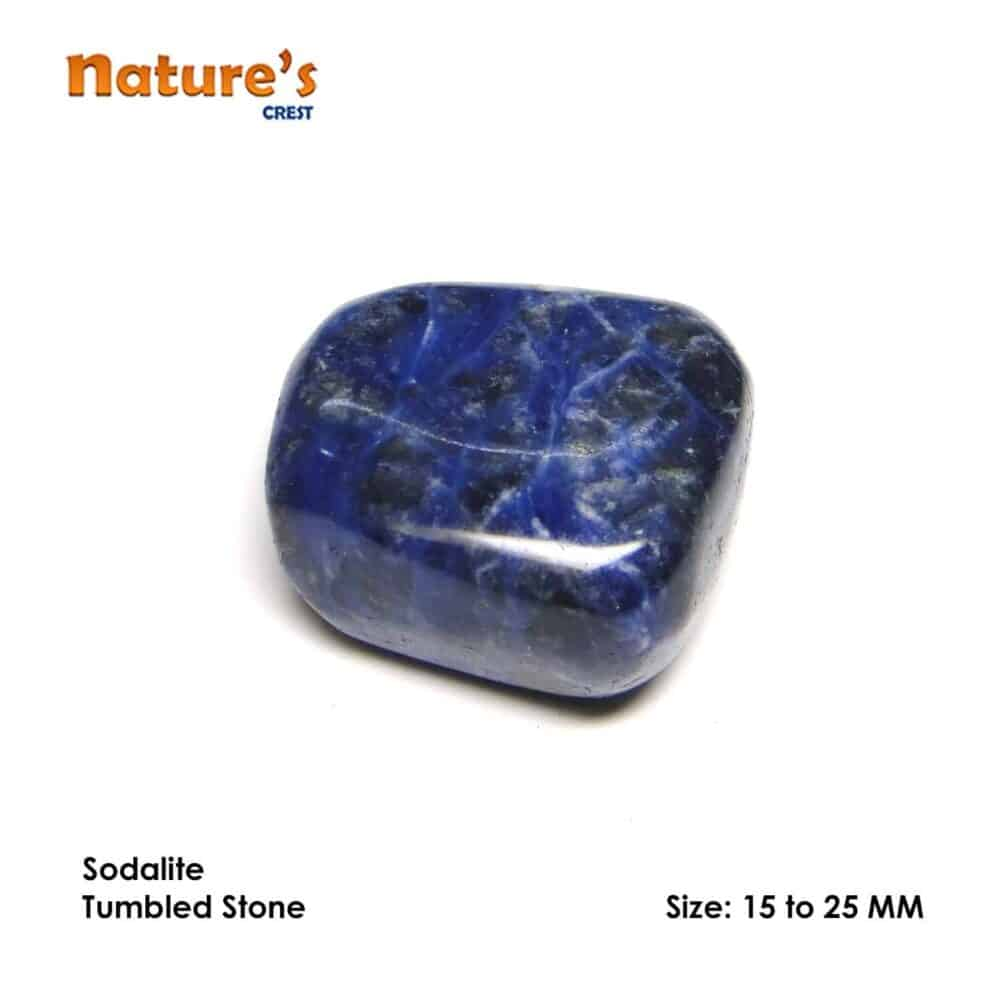 Sodalite Tumbled Pebble Stones Nature's Crest TS019 ₹199.00