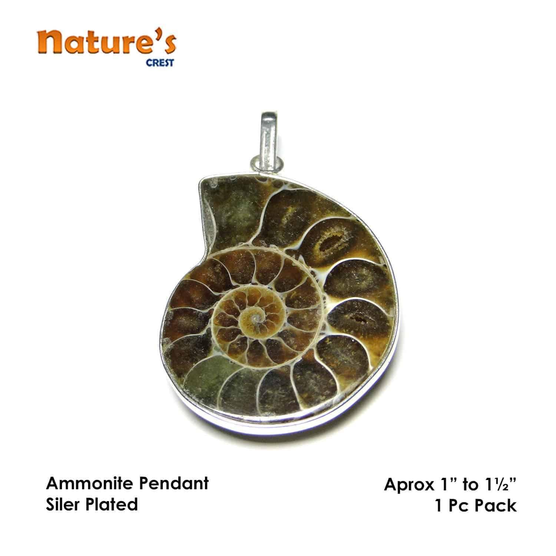 Ammonite Pendant Nature's Crest PN0003 ₹449.00
