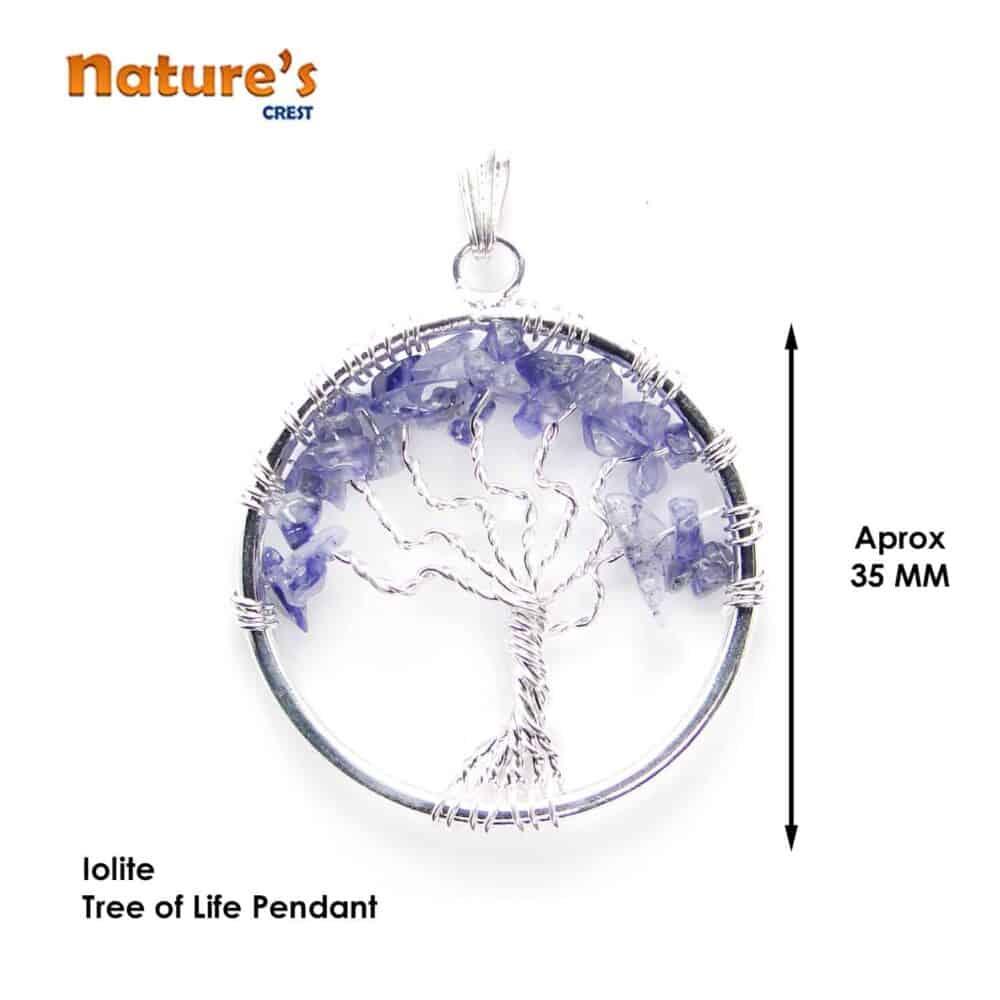 Iolite Tree of Life Pendant Nature's Crest TOL009 ₹249.00